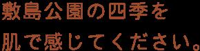 敷島公園の四季を肌で感じてください。